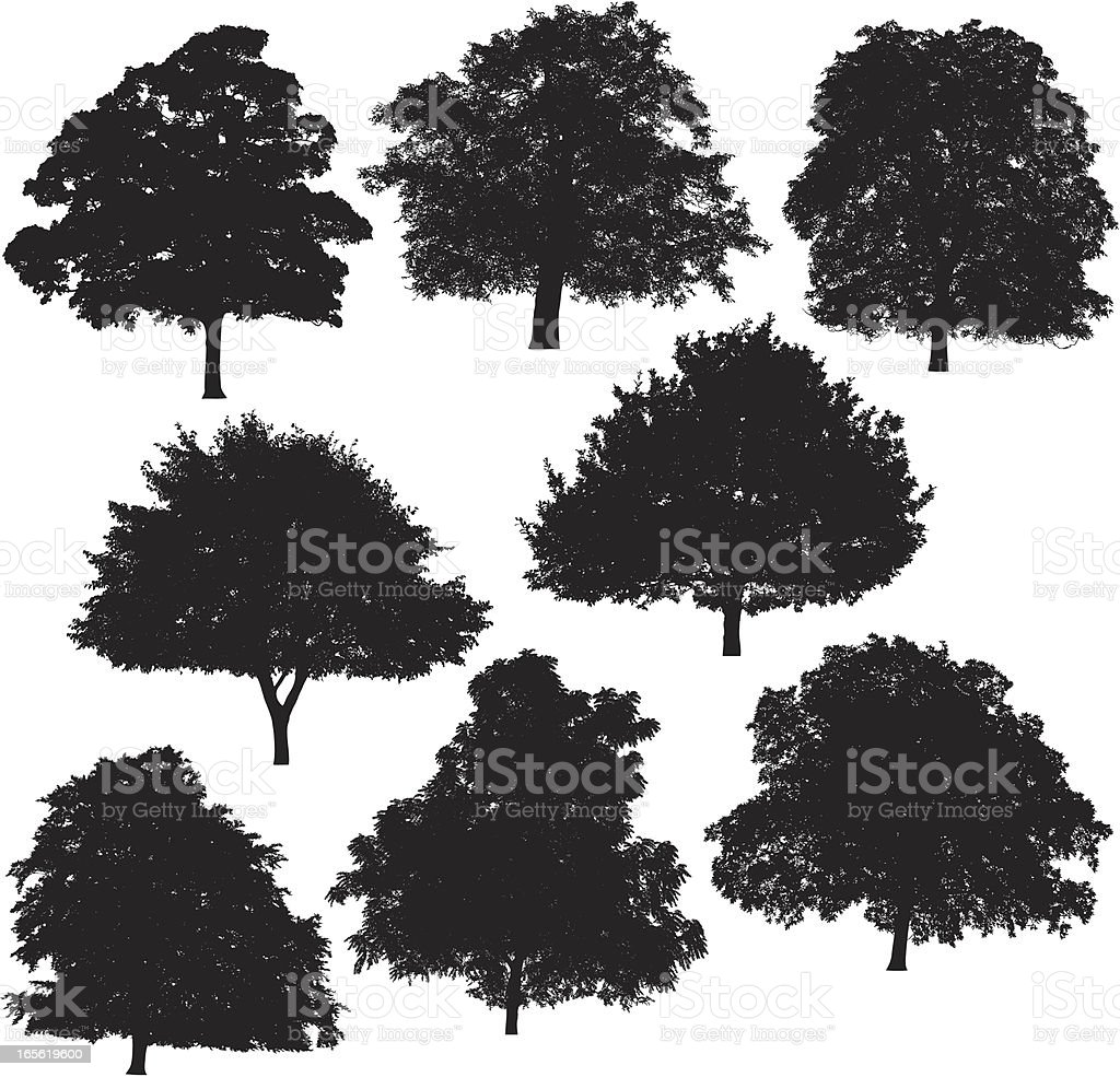 Tree silhouette collection 4 vector art illustration