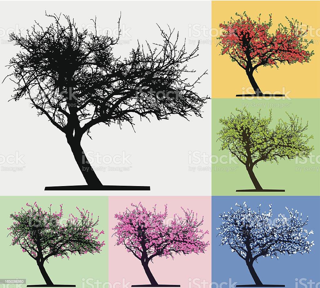 Tree silhouette, Four seasons vector art illustration