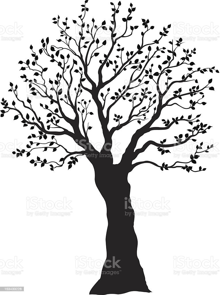 Tree silhouette / Arbre ombragé royalty-free stock vector art