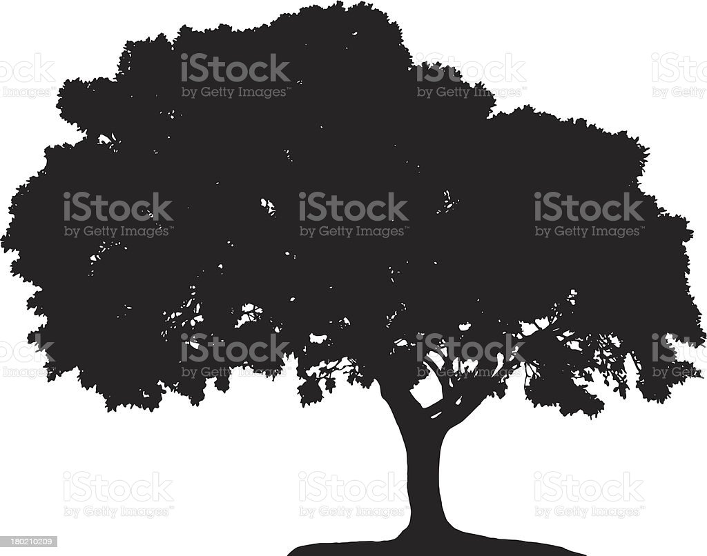 tree silhouette royalty-free stock vector art