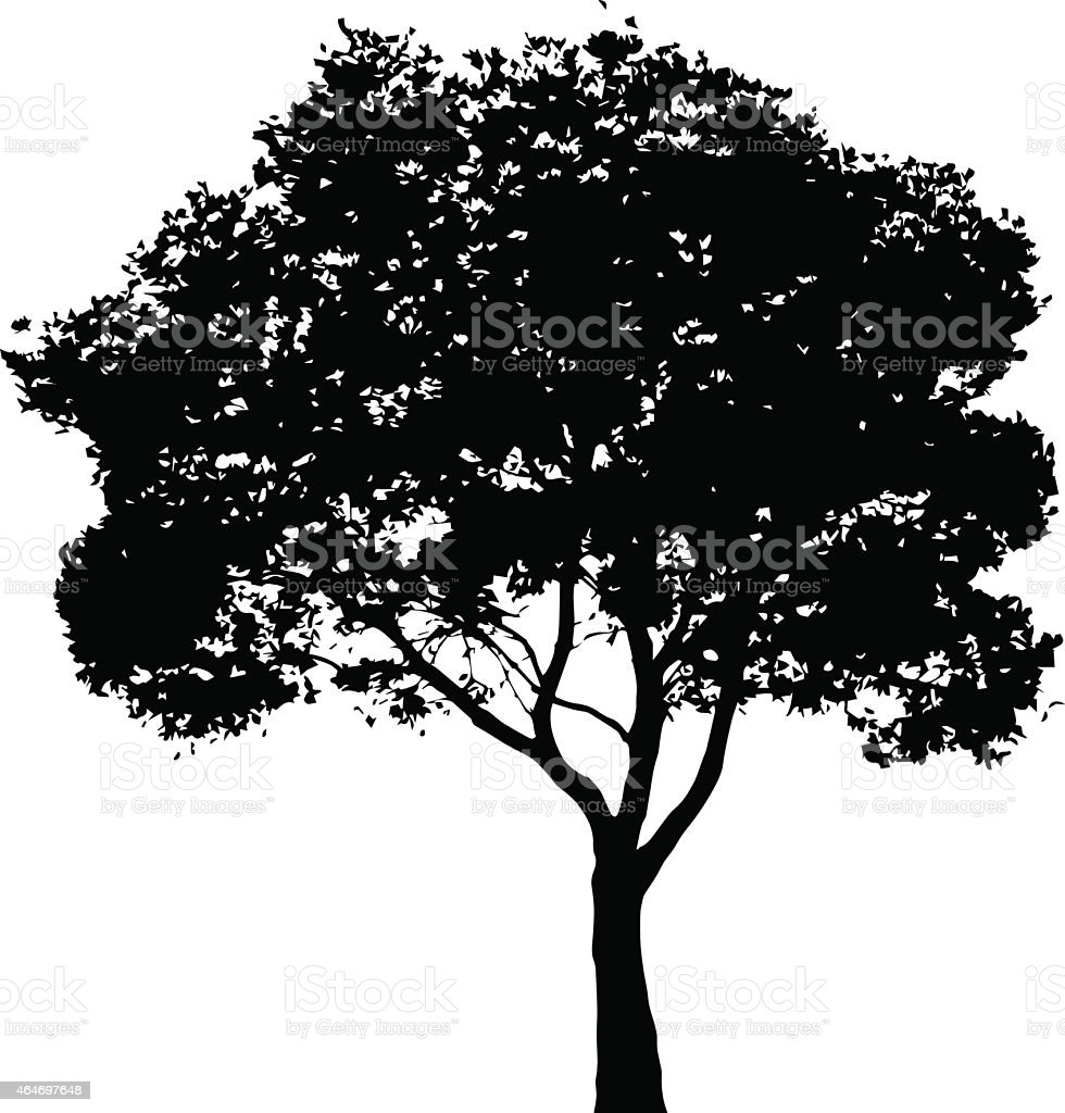 Tree silhouette - vector illustration vector art illustration