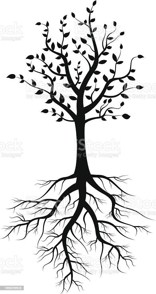tree silhouette with roots royalty-free stock vector art