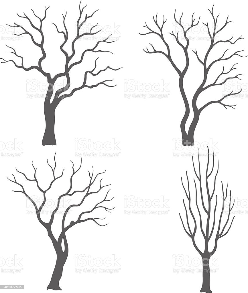 Tree silhouettes vector art illustration