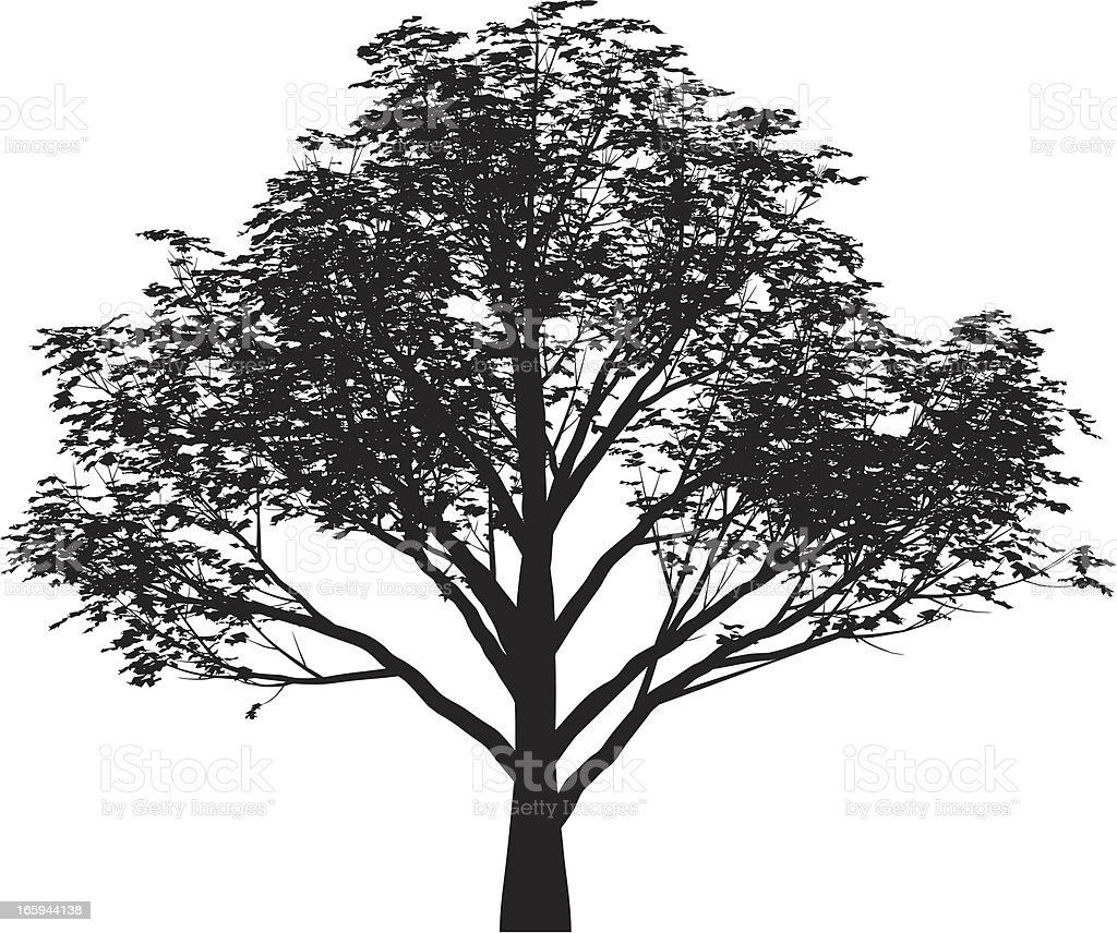tree vector vector art illustration