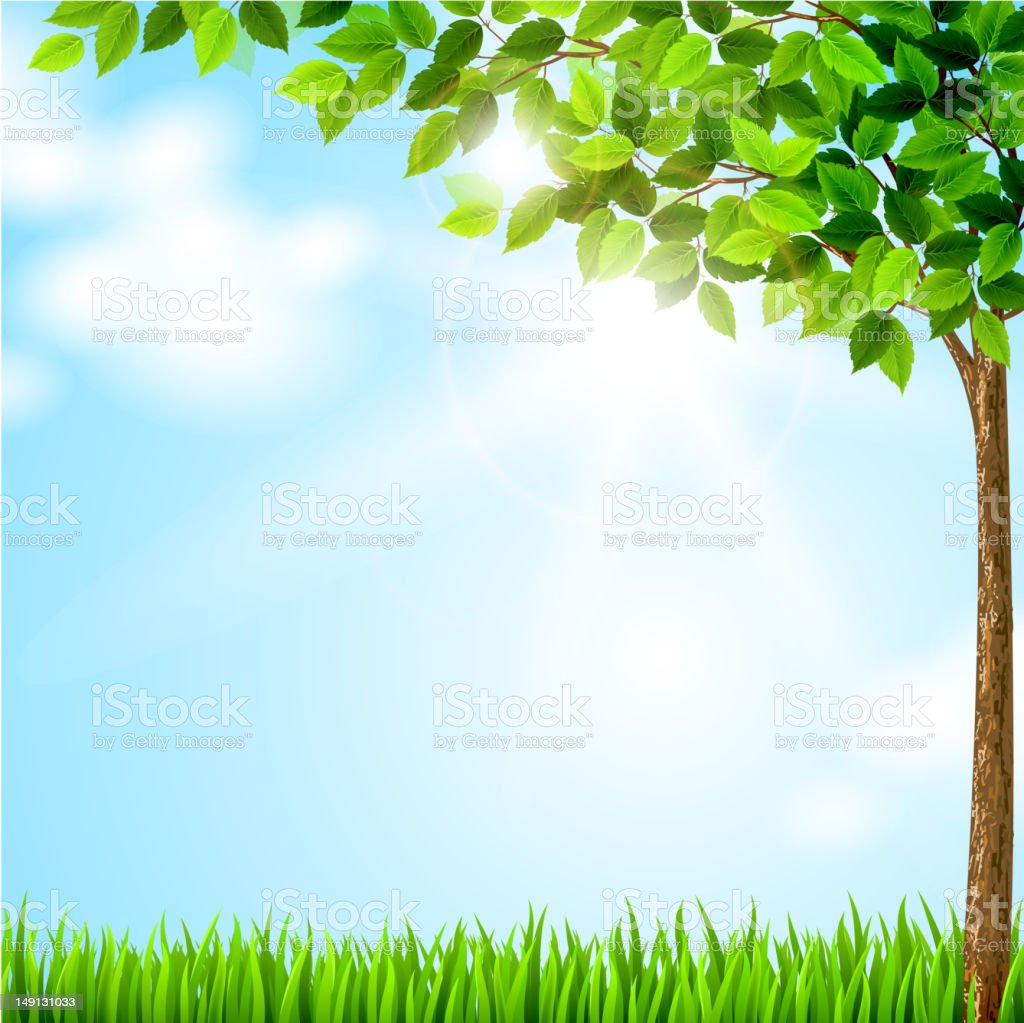 Tree with green leaves growing on the glade vector art illustration
