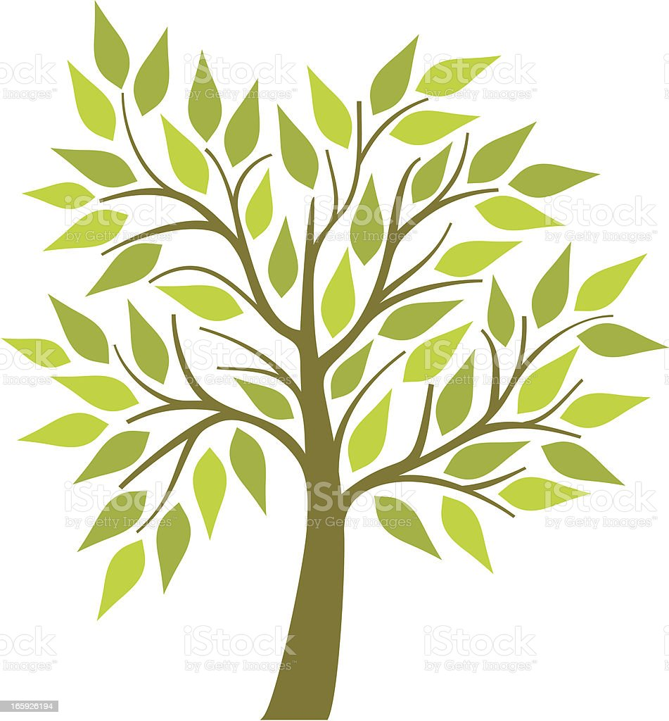 Tree with green leaves vector art illustration