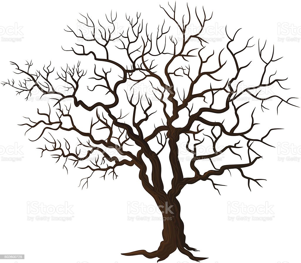 Tree without leaves isolated on white vector art illustration