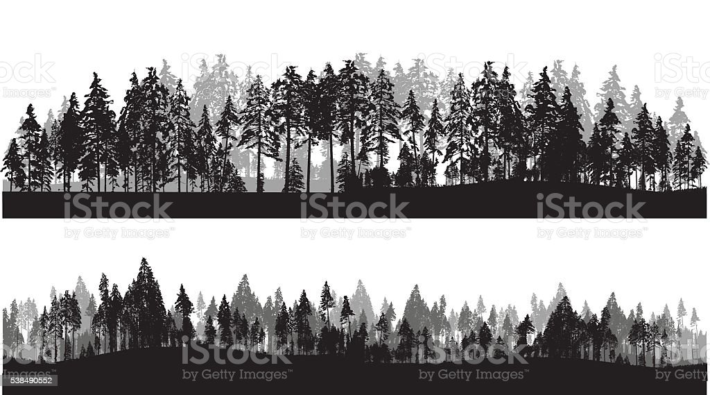 Treeline Header vector art illustration