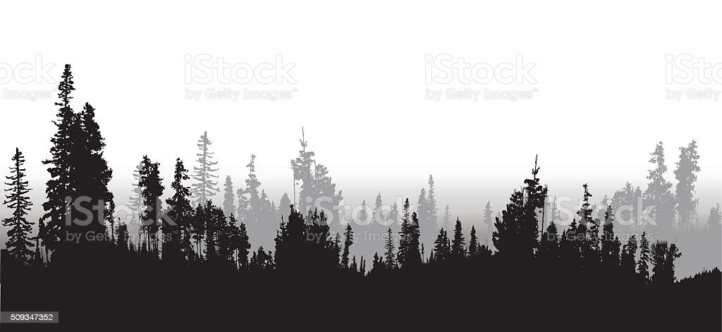 Treeline Spruce And Pines vector art illustration