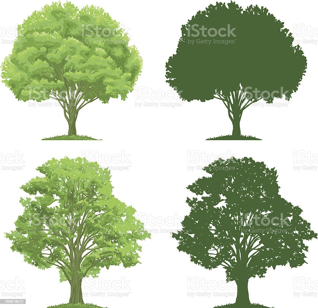Trees and Silhouettes vector art illustration