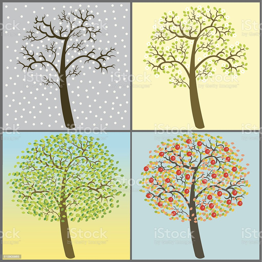 trees collection - four seasons vector art illustration