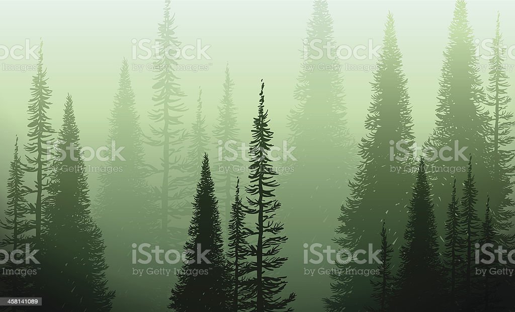 Trees In The Green Mist vector art illustration
