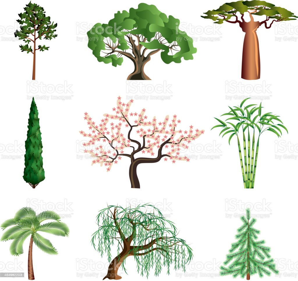 Trees isolated on white vector set vector art illustration