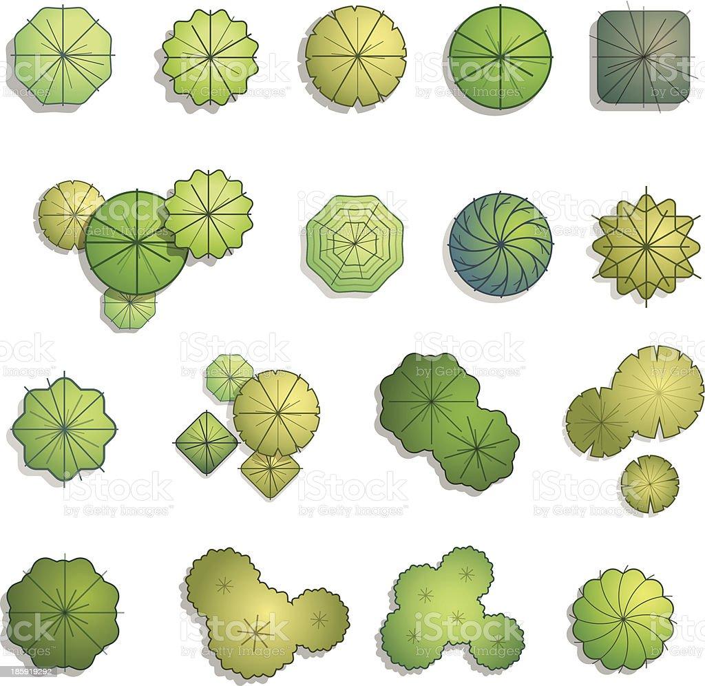 Trees top view for landscape design vector illustration vector art illustration