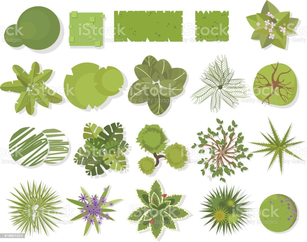Trees top view.Different trees, plants  vector set for architectural or landscape design.Landscaping symbols set isolated on white vector art illustration
