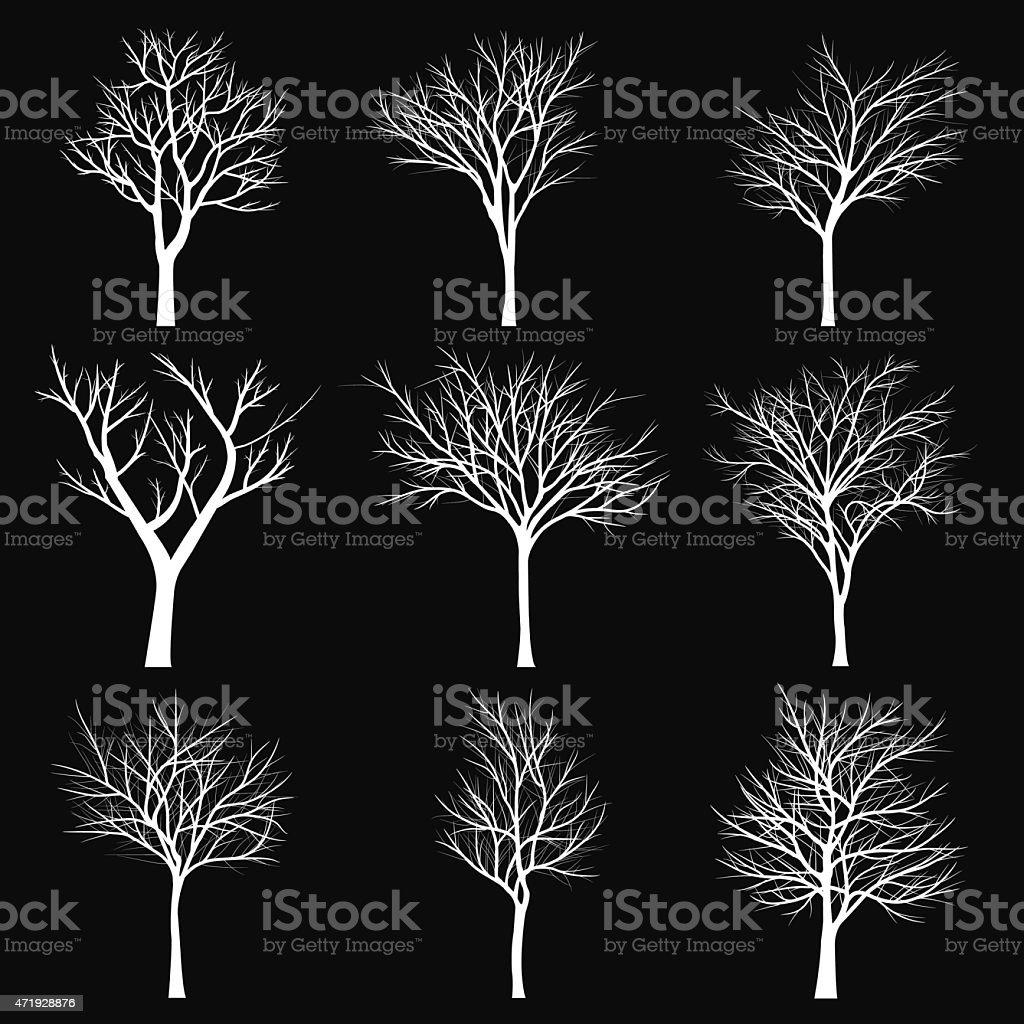 Trees with dead branch vector art illustration