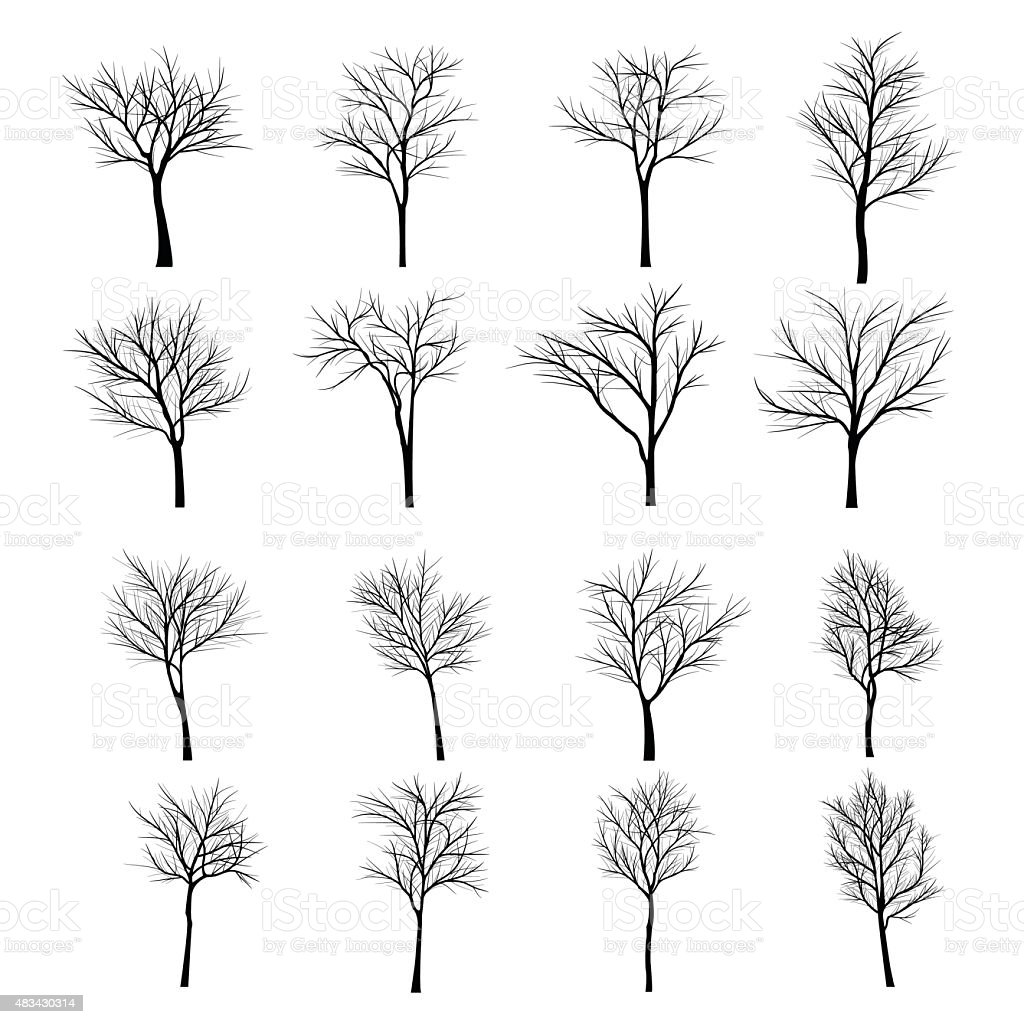 Trees with dead branch vector art illustration
