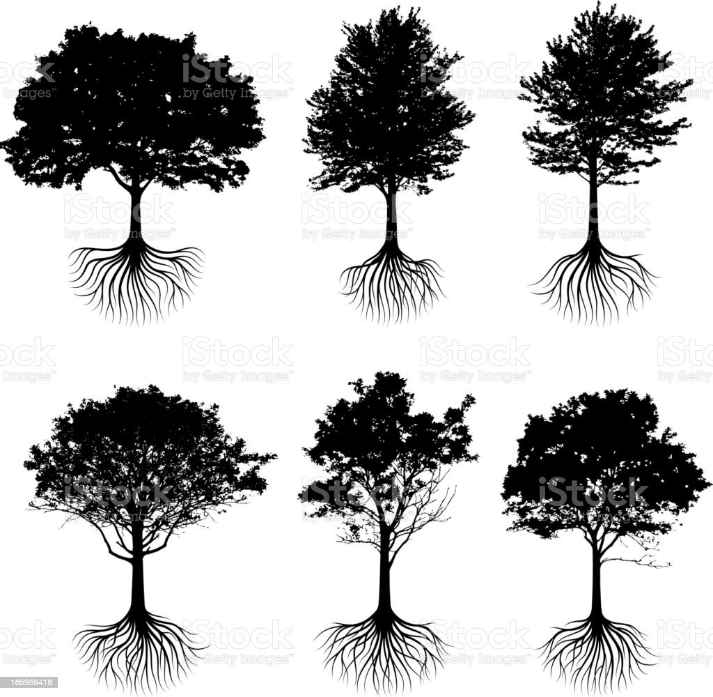Trees with roots silhouettes black and white vector icon set vector art illustration