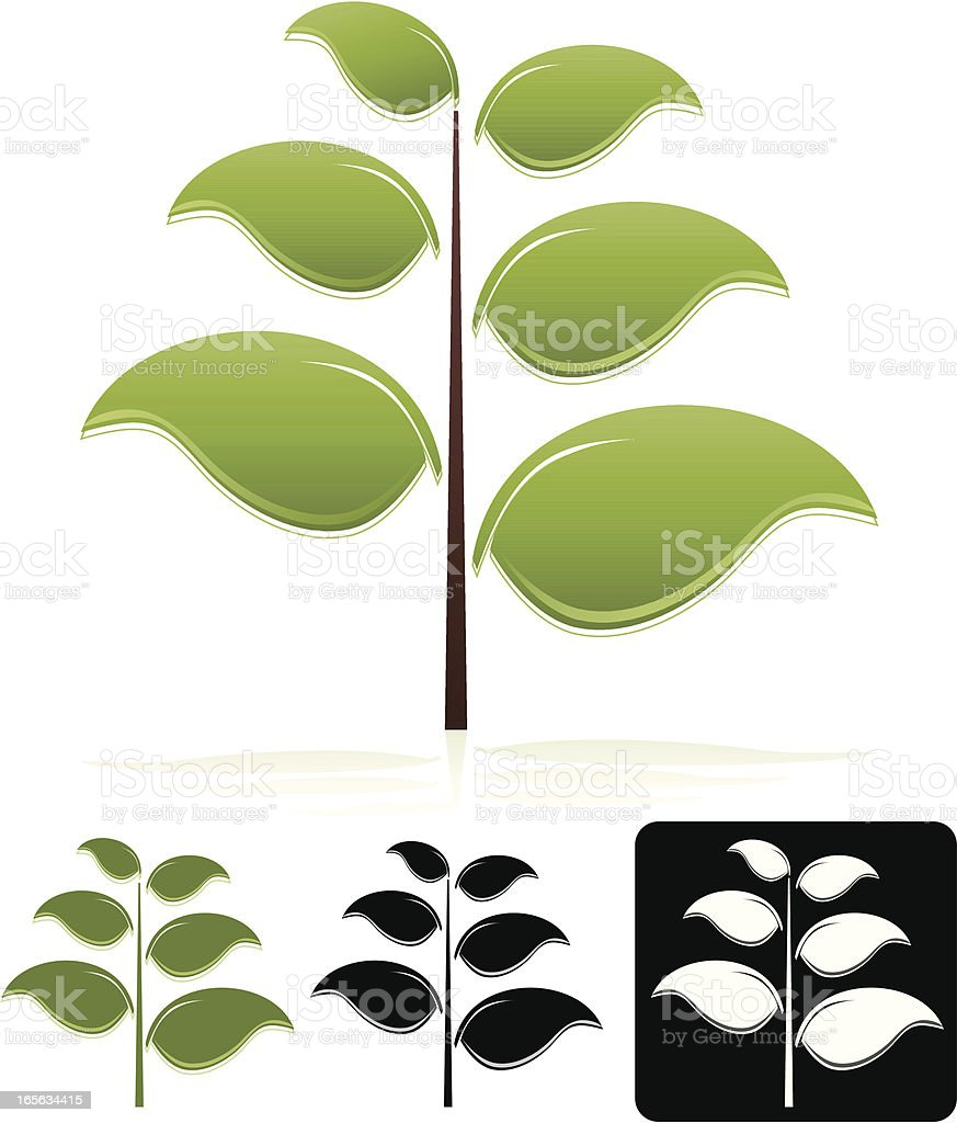Trees with Six Leaves Design Element, Emblem Set royalty-free stock vector art
