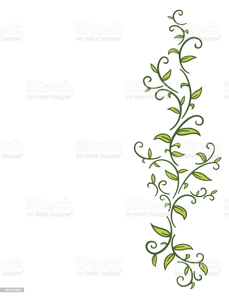 Tribal Vine with Leaves vector art illustration