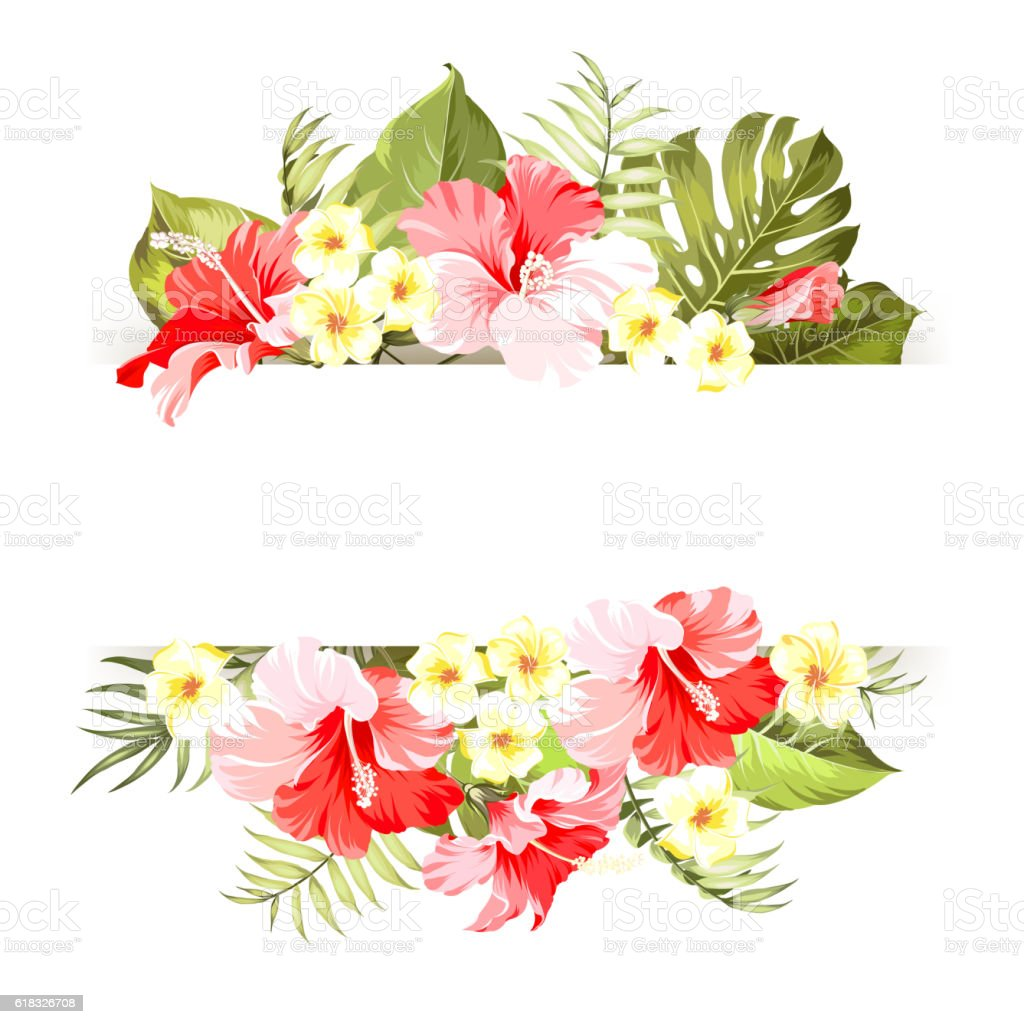 Tripical flowers elements. vector art illustration