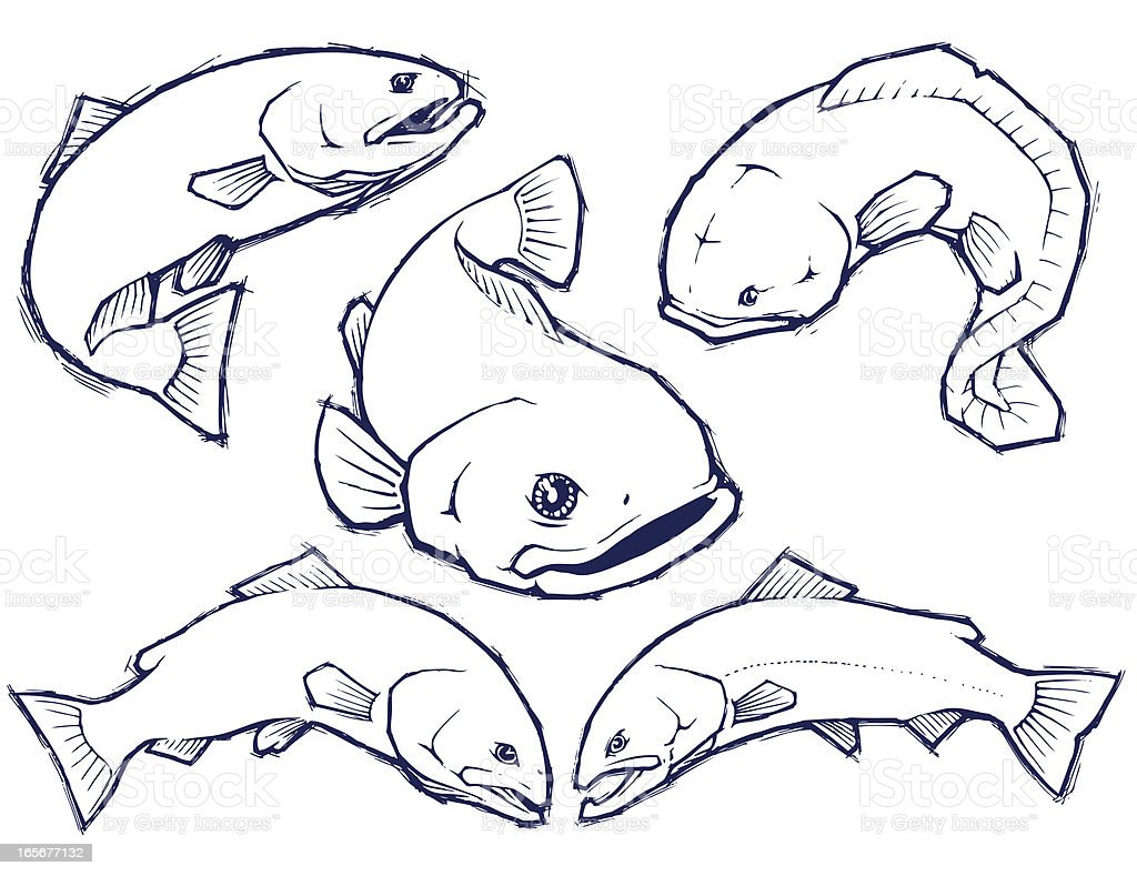 Trophy Fish Ink Drawings vector art illustration