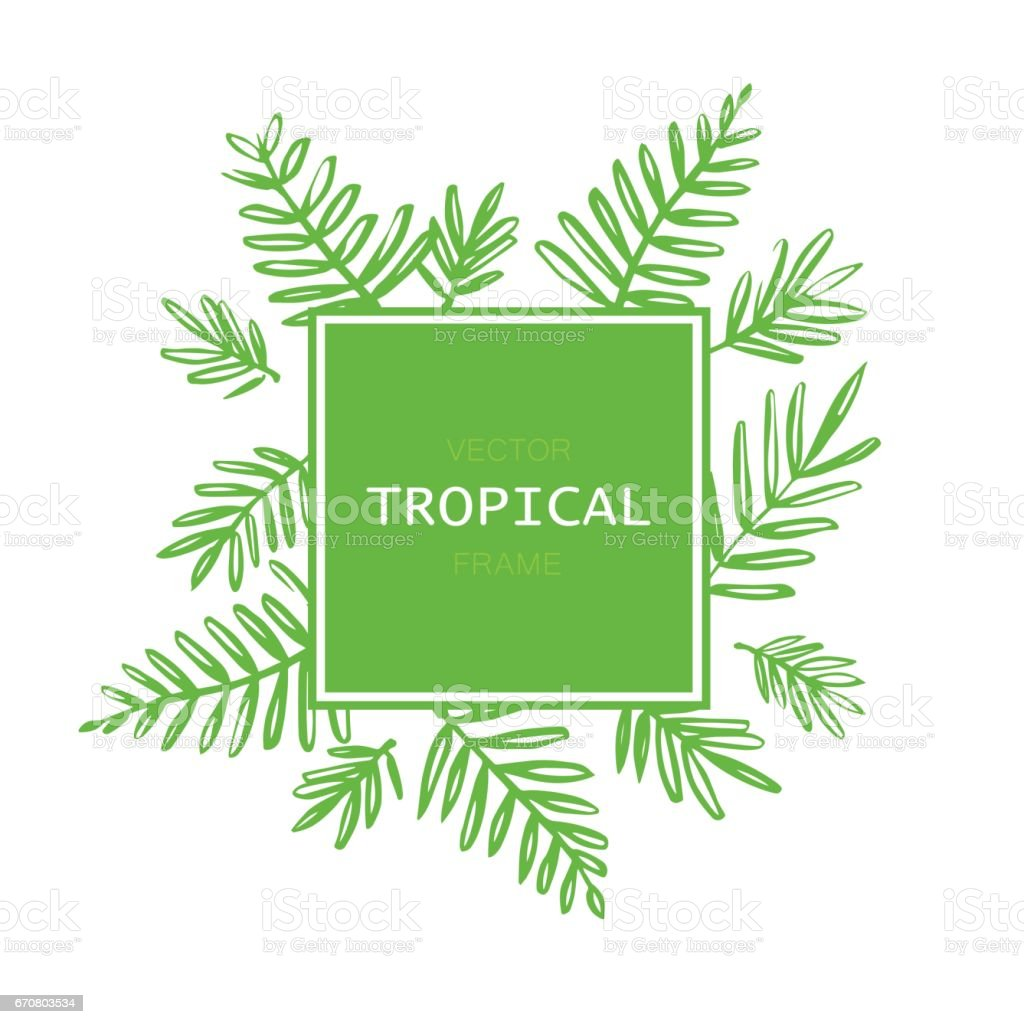 Tropical abstract vector border with palm leaves. Exotic tree foliage made in brush style with place for your text. vector art illustration