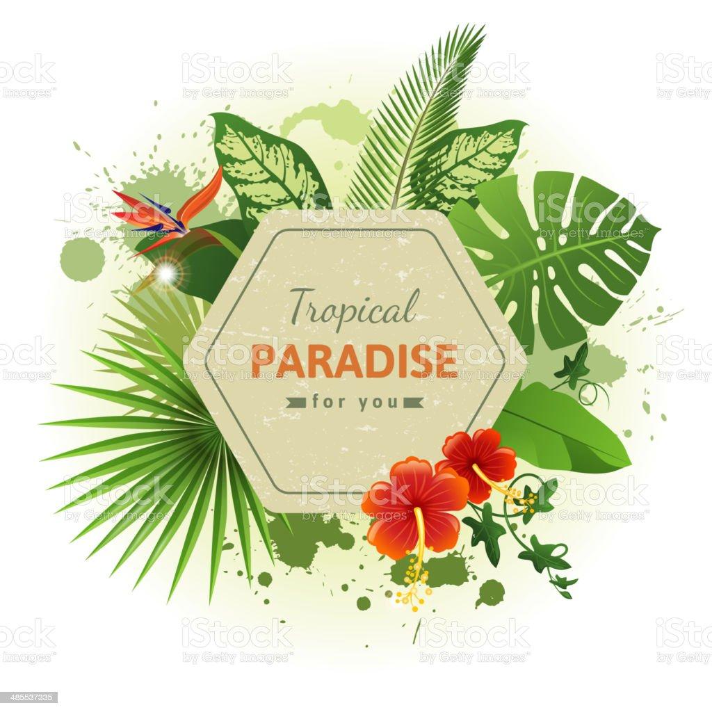 tropical background vector art illustration
