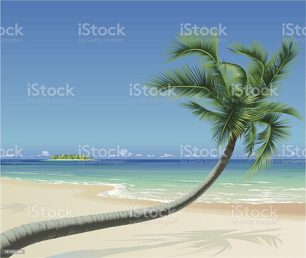 Tropical Beach with Palmtree vector art illustration