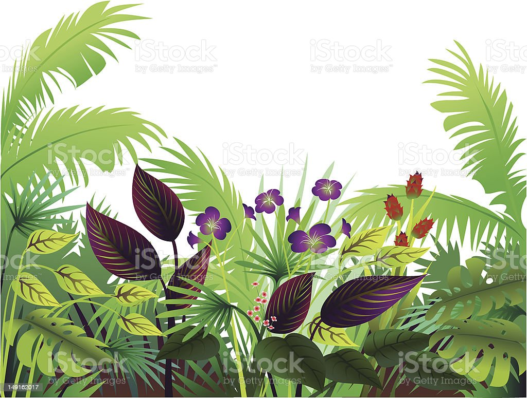 Tropical Border with Maroon royalty-free stock vector art