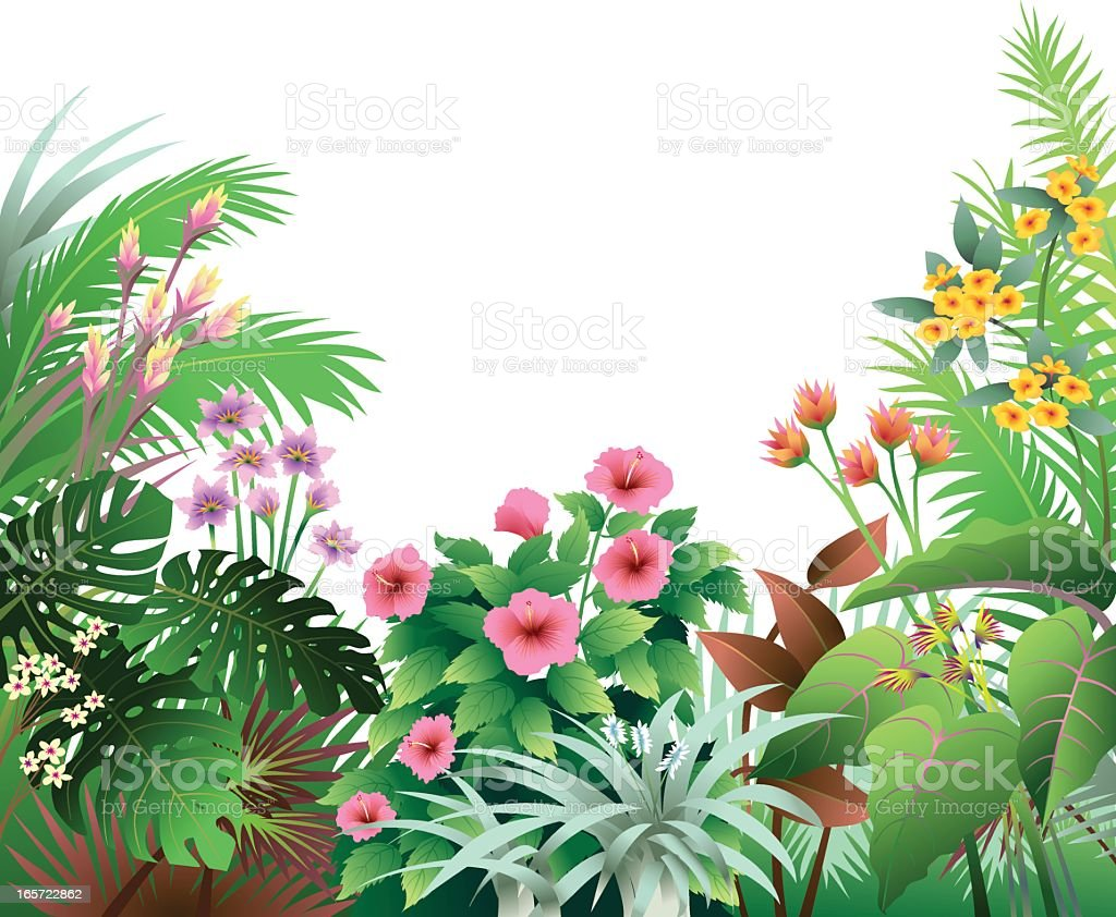 Tropical Border with Pink and Orange vector art illustration