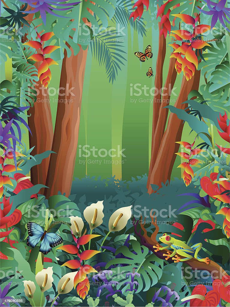 tropical butterflies and tree frog in the rainforest vector art illustration