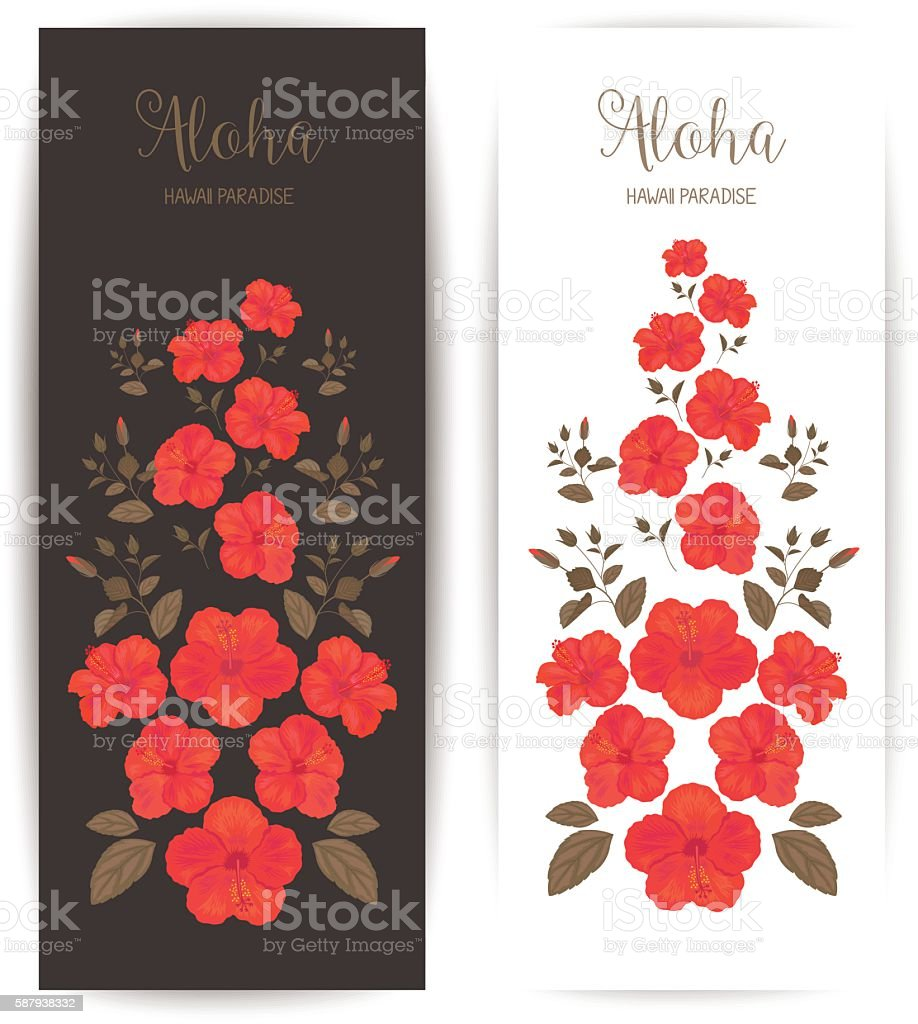 Tropical cards with hibiscus flower banner for cosmetic or banner sign beauty product plant season summer tropical cards with hibiscus flower dhlflorist Image collections
