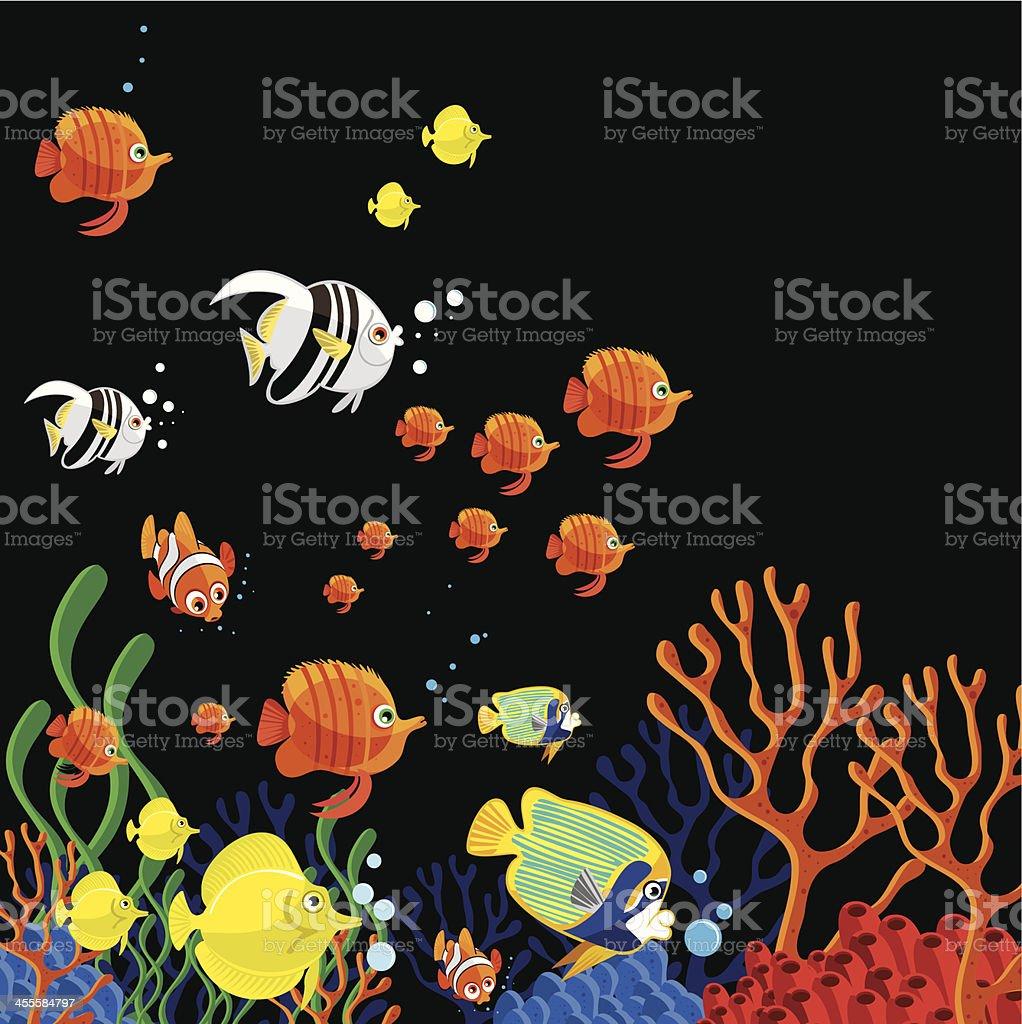 Tropical fish vector art illustration