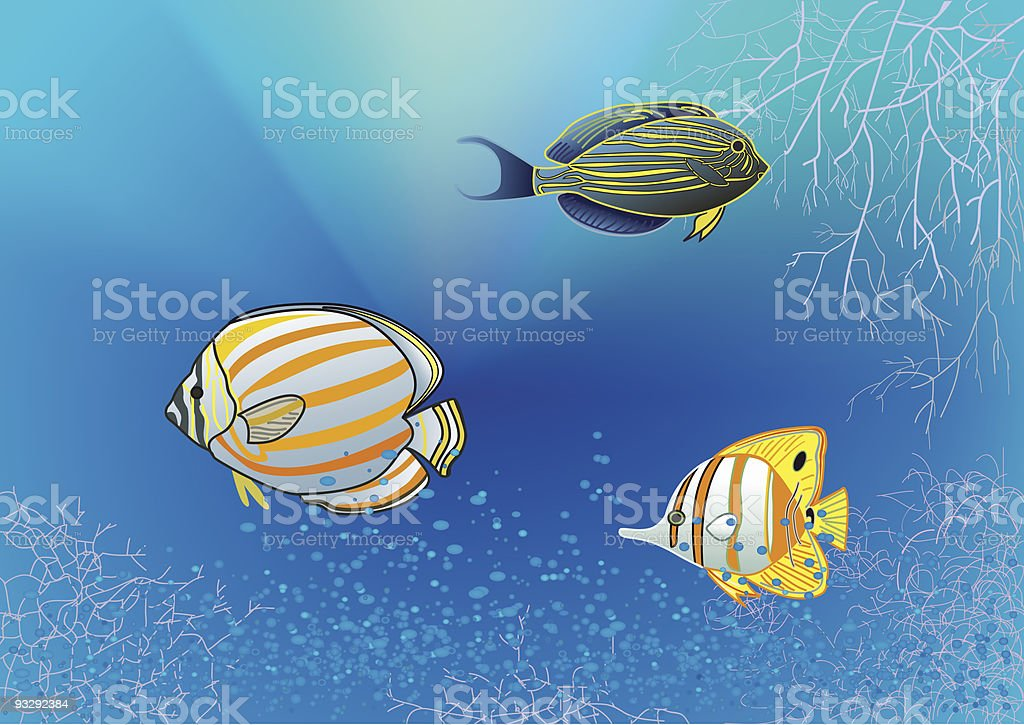 tropical fishes under water royalty-free stock vector art