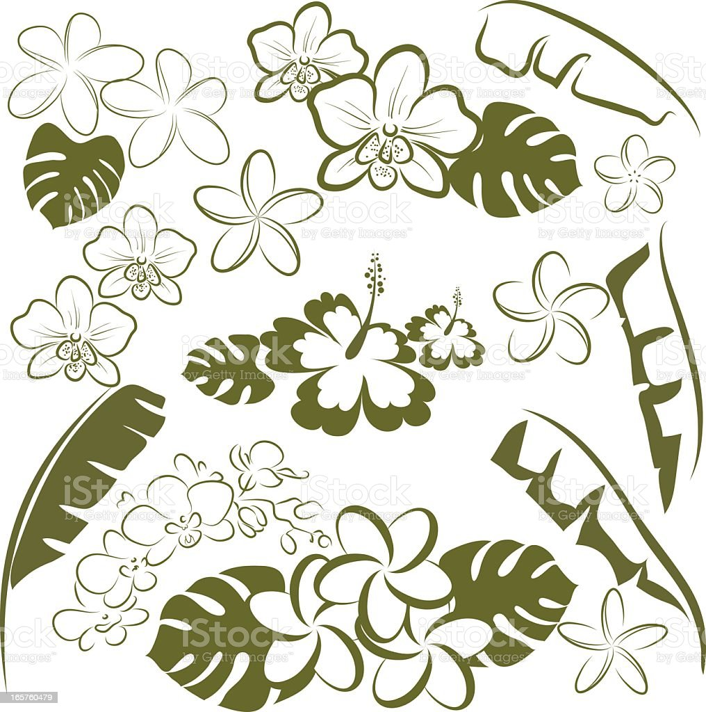 Tropical flowers and leaves vector art in green and white vector art illustration