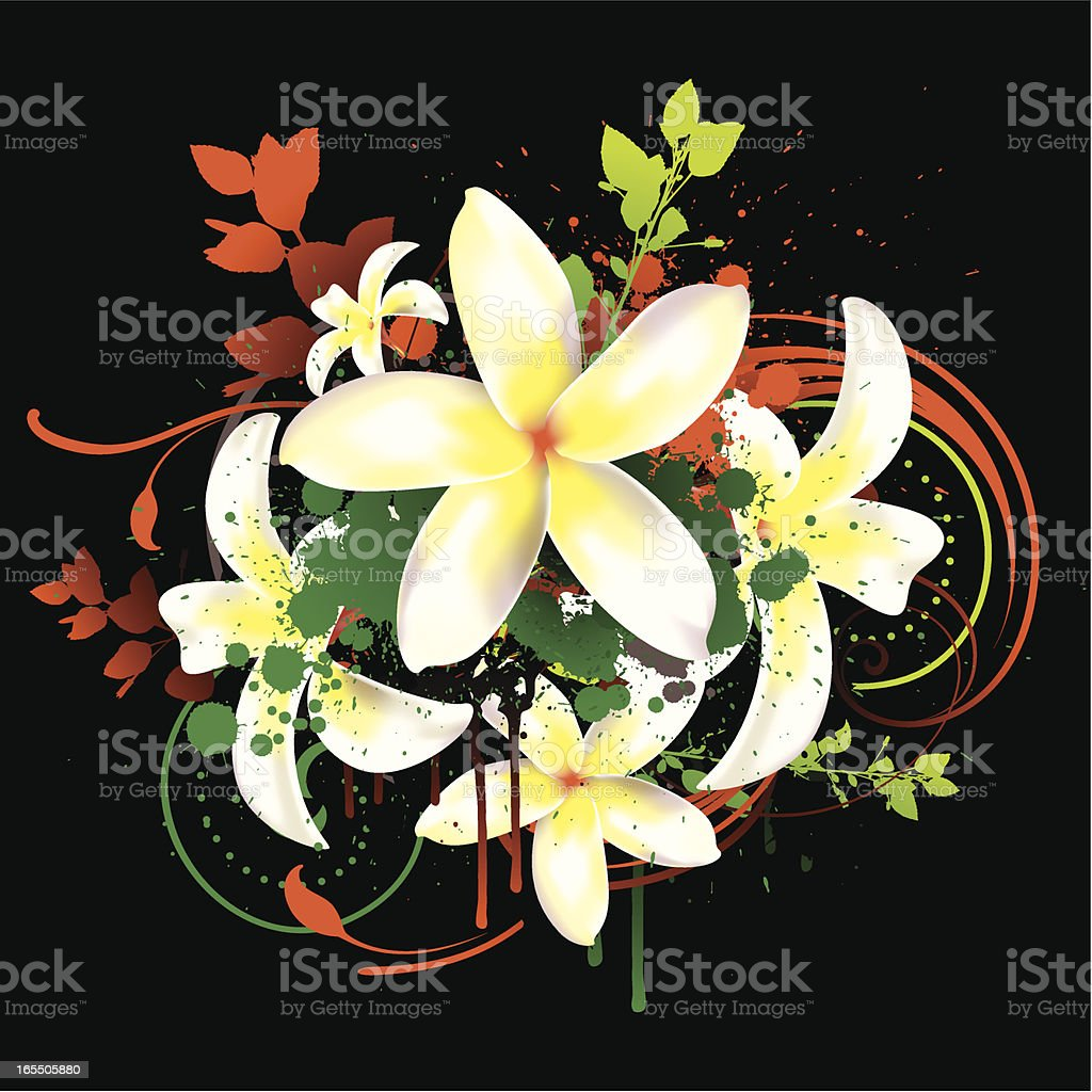 Tropical flowers royalty-free stock vector art