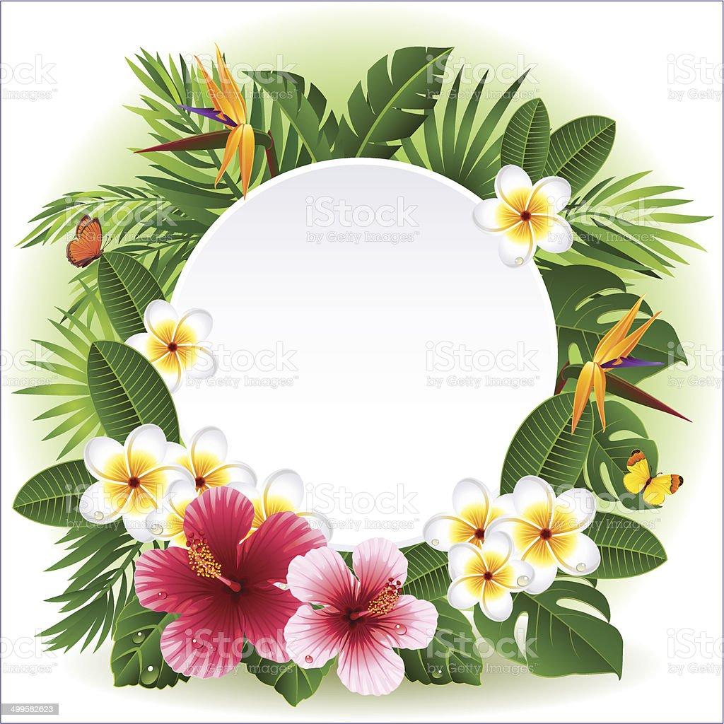 Tropical flowers vector art illustration