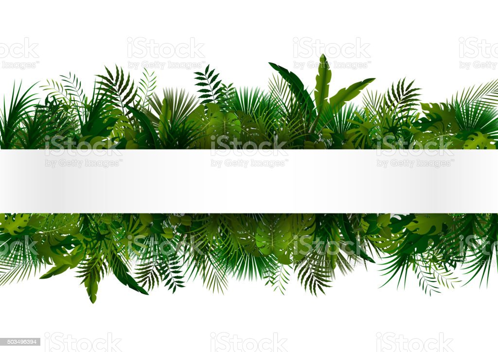 Tropical foliage. Floral design background vector art illustration