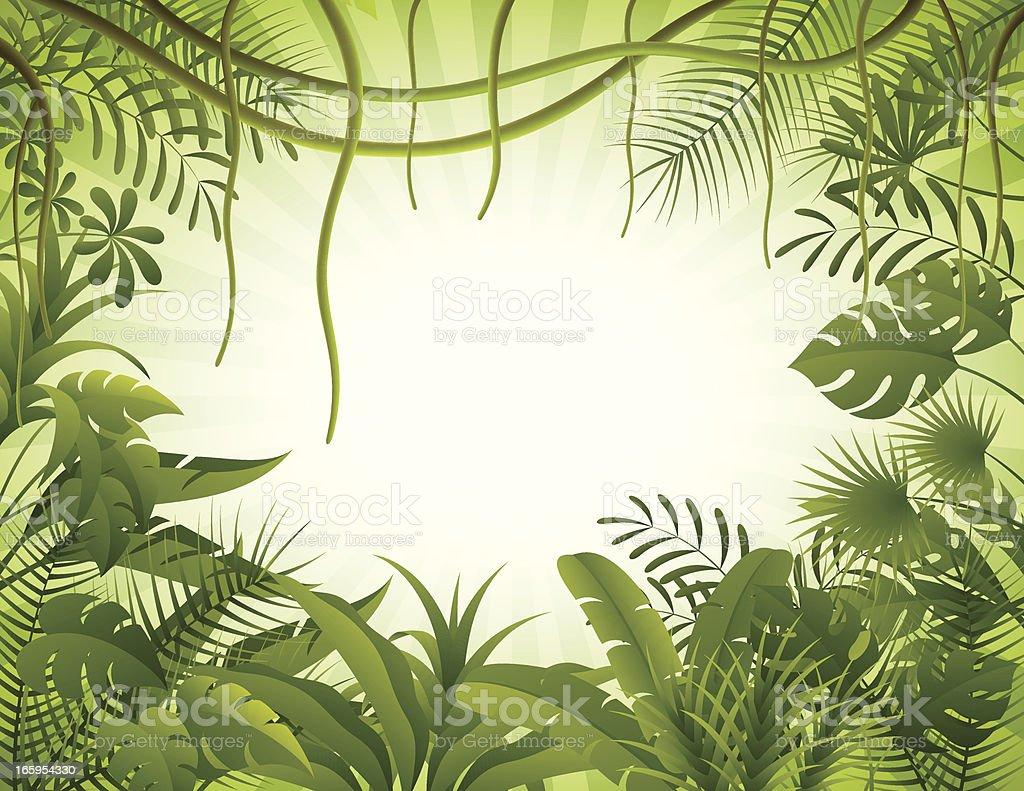 Tropical forest background vector art illustration