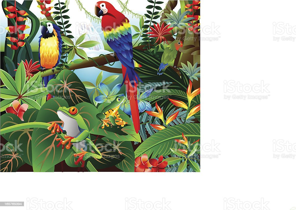Tropical Forest vector art illustration
