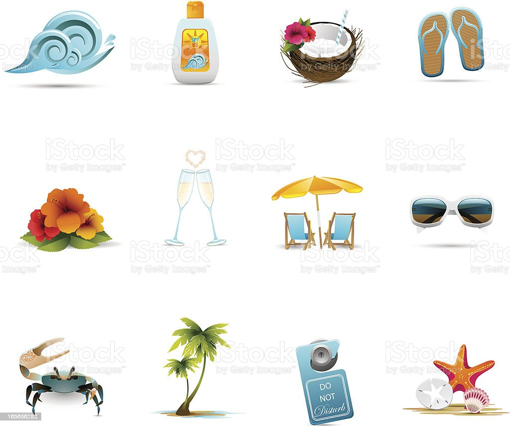 Tropical Honeymoon Icons vector art illustration