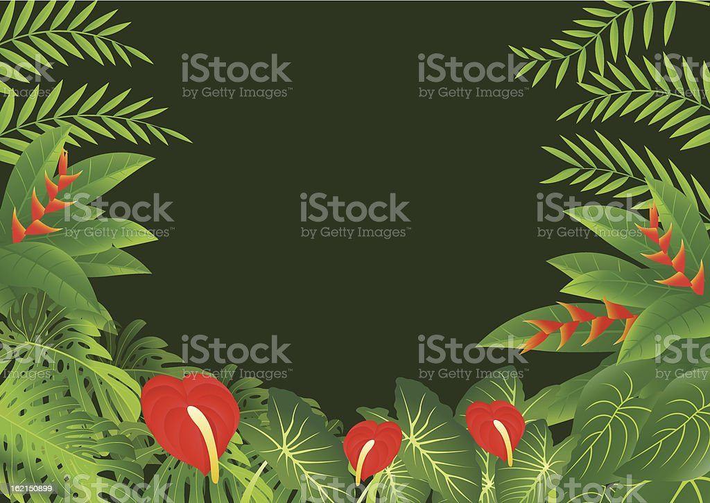 tropical leaf background royalty-free stock vector art
