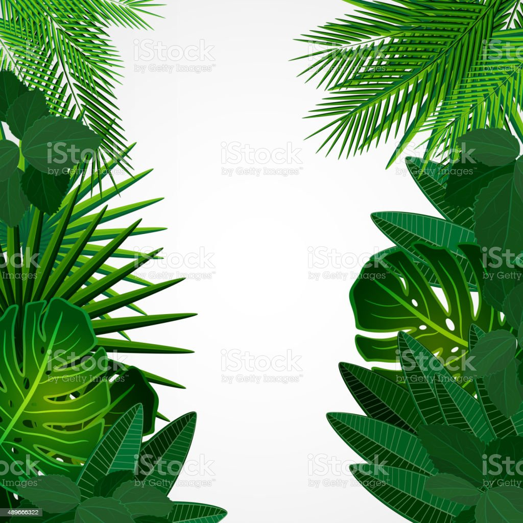 Tropical leaves. Floral design background. vector art illustration