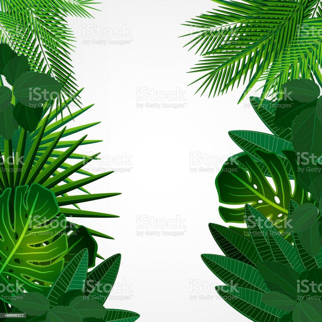 Tropical leaves. Floral design background. vector art illustration