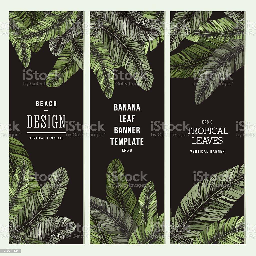 Tropical palm leaves. Vertical banner set. Vector illustration vector art illustration