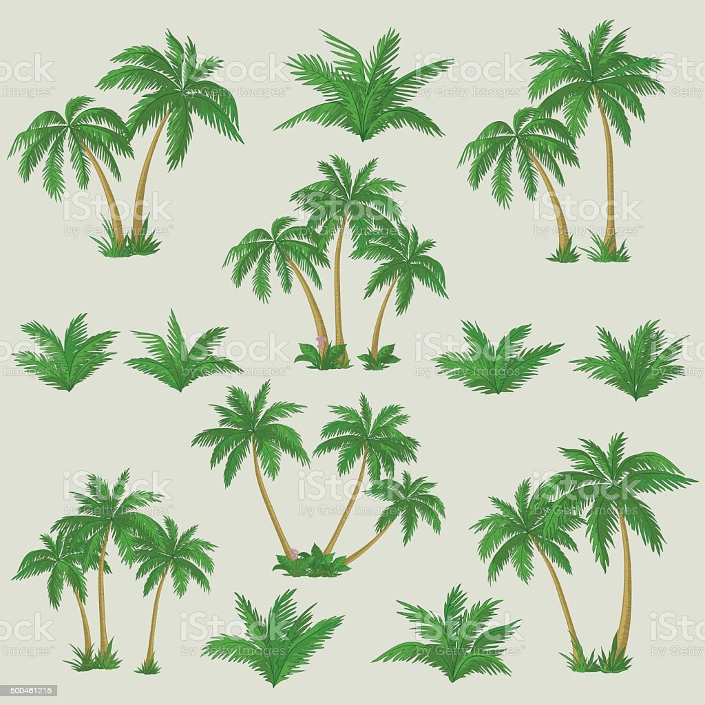 Tropical palm trees set vector art illustration