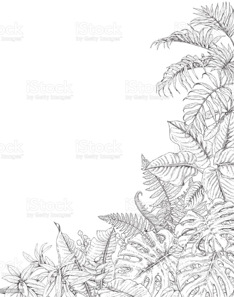 Tropical Plants Corner Background vector art illustration