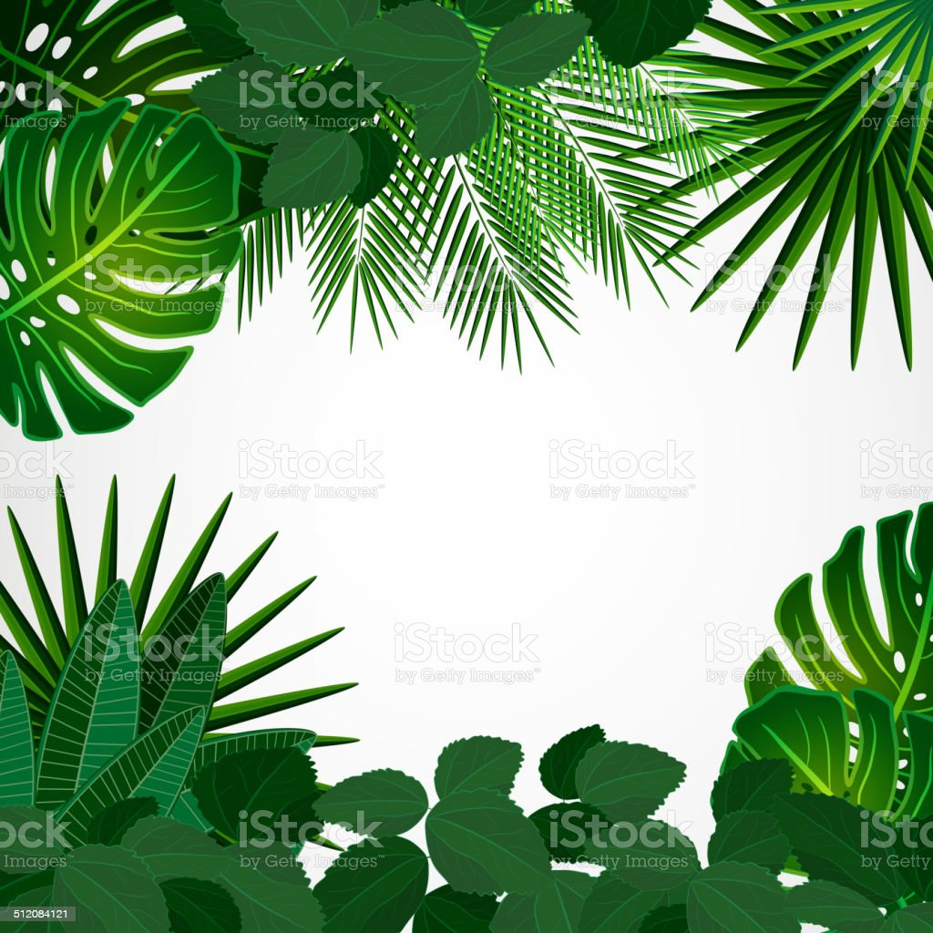 Tropical plants vector art illustration