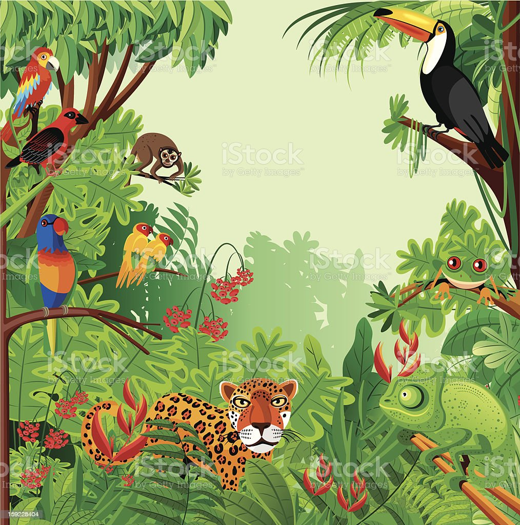 Tropical rainforest vector art illustration